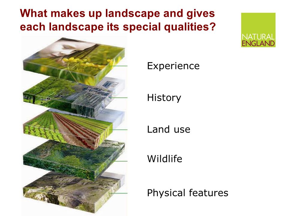 What makes up landscape and gives each landscape its special qualities.