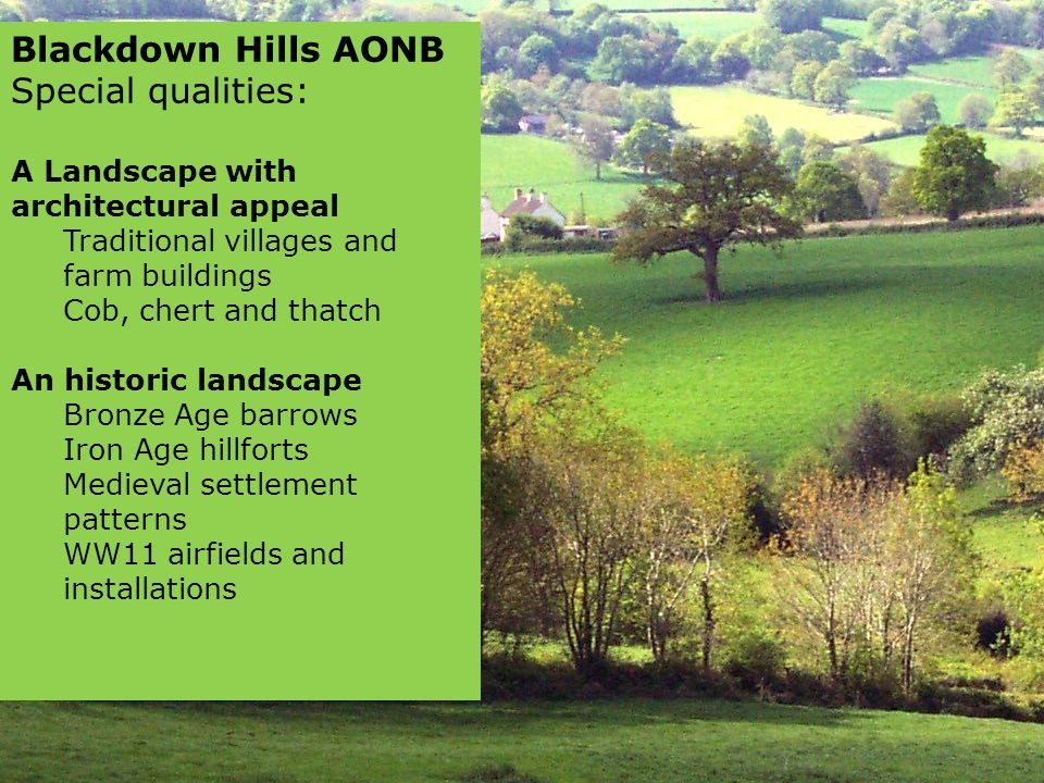 Blackdown Hills AONB Special qualities: A Landscape with architectural appeal Traditional villages and farm buildings Cob, chert and thatch An historic landscape Bronze Age barrows Iron Age hillforts Medieval settlement patterns WW11 airfields and installations