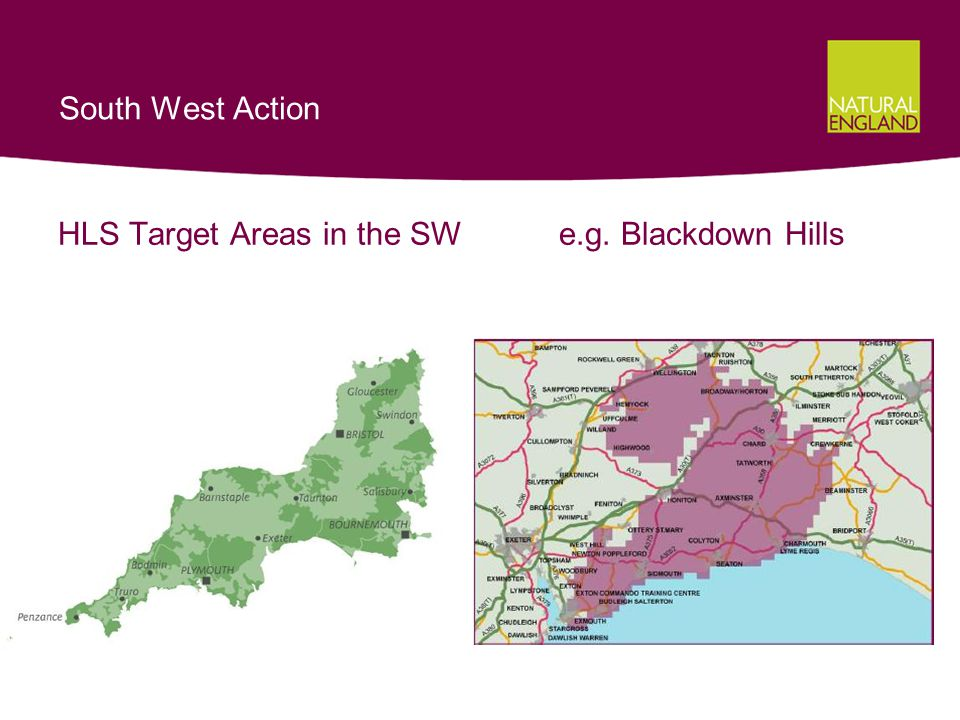 South West Action HLS Target Areas in the SW e.g. Blackdown Hills
