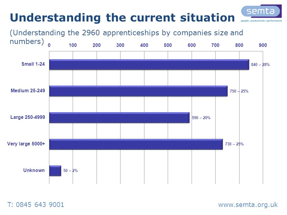 Understanding the current situation (Understanding the 2960 apprenticeships by companies size and numbers) T: 0845 643 9001www.semta.org.uk