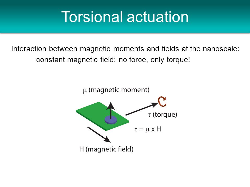 Torsional actuation Interaction between magnetic moments and fields at the nanoscale: constant magnetic field: no force, only torque!