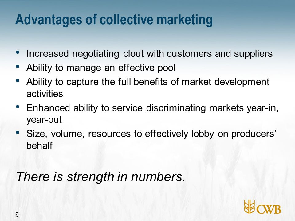 6 Advantages of collective marketing Increased negotiating clout with customers and suppliers Ability to manage an effective pool Ability to capture the full benefits of market development activities Enhanced ability to service discriminating markets year-in, year-out Size, volume, resources to effectively lobby on producers' behalf There is strength in numbers.