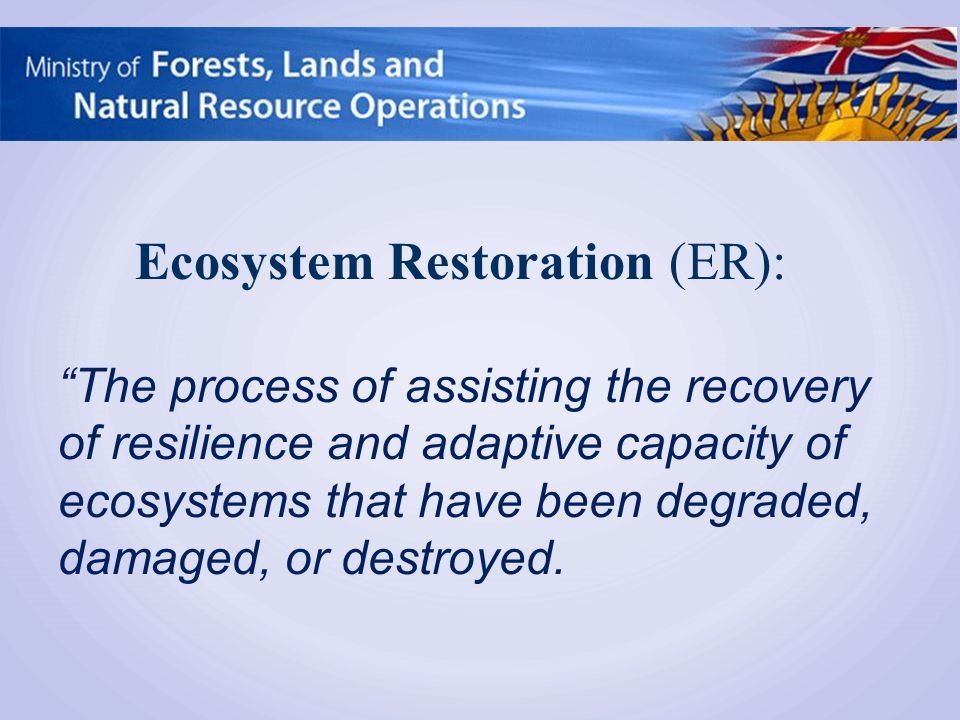 The process of assisting the recovery of resilience and adaptive capacity of ecosystems that have been degraded, damaged, or destroyed.