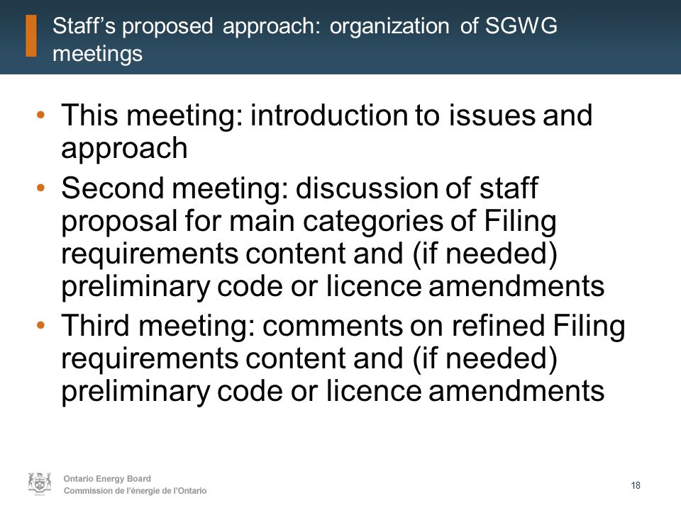 18 Staff's proposed approach: organization of SGWG meetings This meeting: introduction to issues and approach Second meeting: discussion of staff proposal for main categories of Filing requirements content and (if needed) preliminary code or licence amendments Third meeting: comments on refined Filing requirements content and (if needed) preliminary code or licence amendments