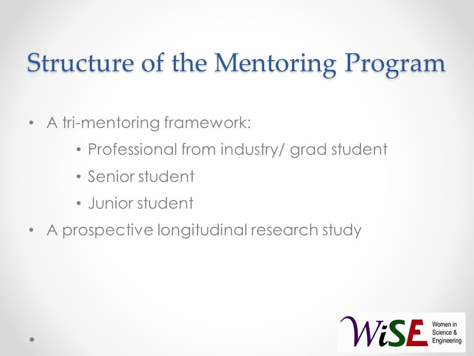 Structure of the Mentoring Program A tri-mentoring framework: Professional from industry/ grad student Senior student Junior student A prospective longitudinal research study