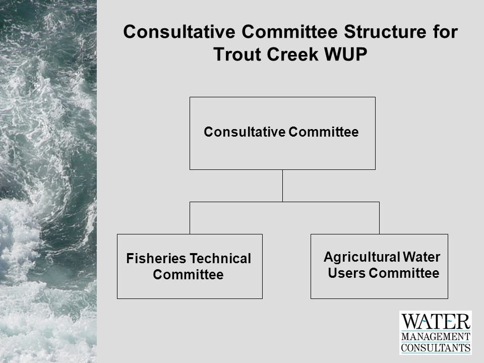 Consultative Committee Structure for Trout Creek WUP Consultative Committee Fisheries Technical Committee Agricultural Water Users Committee