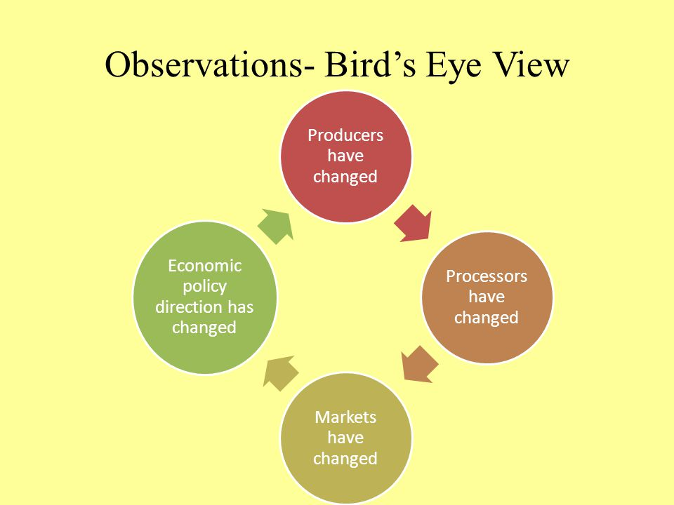 Observations- Bird's Eye View Producers have changed Processors have changed Markets have changed Economic policy direction has changed