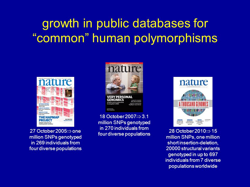 growth in public databases for common human polymorphisms 27 October 2005  one million SNPs genotyped in 269 individuals from four diverse populations 28 October 2010  15 million SNPs, one million short insertion-deletion, 20000 structural variants genotyped in up to 697 individuals from 7 diverse populations worldwide 18 October 2007  3.1 million SNPs genotyped in 270 individuals from four diverse populations