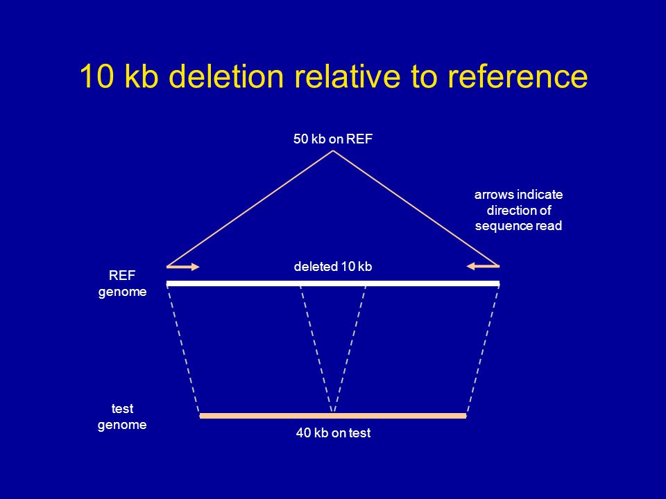 10 kb deletion relative to reference 50 kb on REF REF genome test genome 40 kb on test deleted 10 kb arrows indicate direction of sequence read
