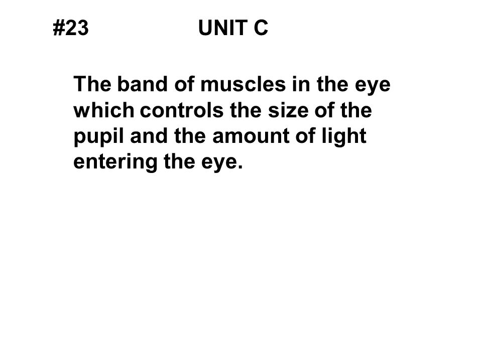 #23UNIT C The band of muscles in the eye which controls the size of the pupil and the amount of light entering the eye.