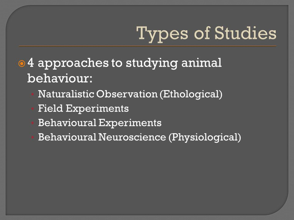 Types of Studies  4 approaches to studying animal behaviour: Naturalistic Observation (Ethological) Field Experiments Behavioural Experiments Behavioural Neuroscience (Physiological)