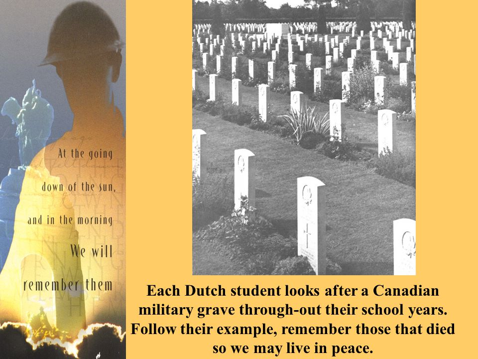 Each Dutch student looks after a Canadian military grave through-out their school years.