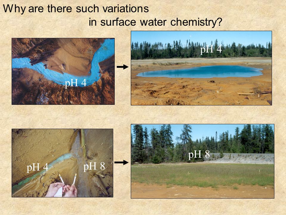 pH 4 pH 8 pH 4 pH 8 Why are there such variations in surface water chemistry