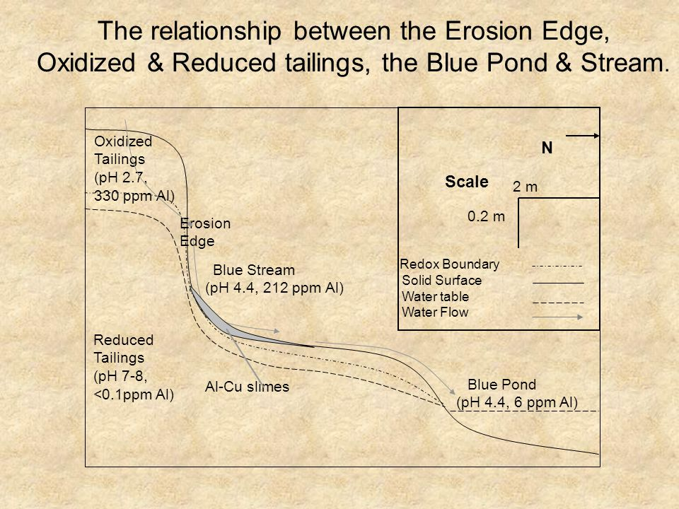 Blue Pond (pH 4.4, 6 ppm Al) Reduced Tailings (pH 7-8, <0.1ppm Al) Blue Stream (pH 4.4, 212 ppm Al) N Erosion Edge Oxidized Tailings (pH 2.7, 330 ppm Al) Redox Boundary Solid Surface Water table Water Flow 2 m 0.2 m Scale Al-Cu slimes The relationship between the Erosion Edge, Oxidized & Reduced tailings, the Blue Pond & Stream.