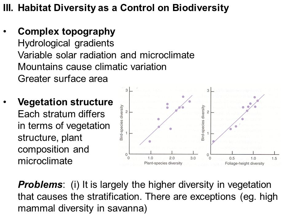 III.Habitat Diversity as a Control on Biodiversity Complex topography Hydrological gradients Variable solar radiation and microclimate Mountains cause climatic variation Greater surface area Vegetation structure Each stratum differs in terms of vegetation structure, plant composition and microclimate Problems: (i) It is largely the higher diversity in vegetation that causes the stratification.