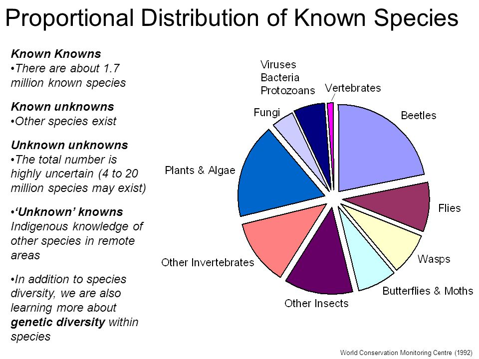 Proportional Distribution of Known Species World Conservation Monitoring Centre (1992) Known Knowns There are about 1.7 million known species Known unknowns Other species exist Unknown unknowns The total number is highly uncertain (4 to 20 million species may exist) 'Unknown' knowns Indigenous knowledge of other species in remote areas In addition to species diversity, we are also learning more about genetic diversity within species