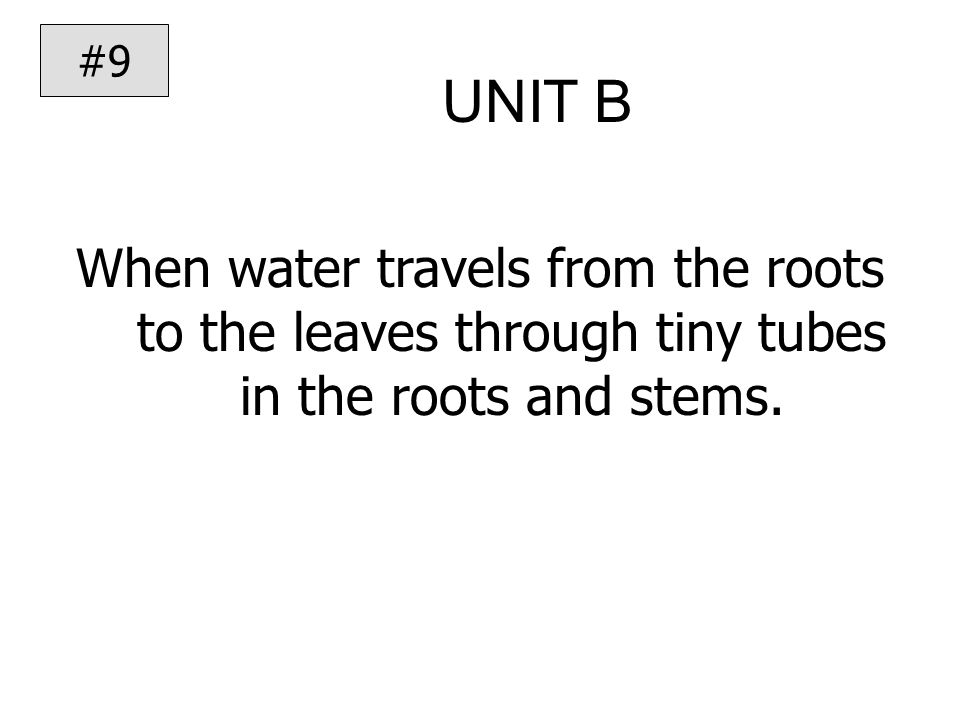 UNIT B When water travels from the roots to the leaves through tiny tubes in the roots and stems.