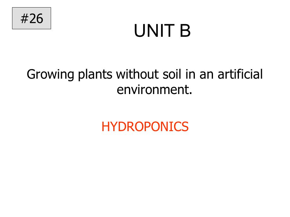 UNIT B Growing plants without soil in an artificial environment. HYDROPONICS #26