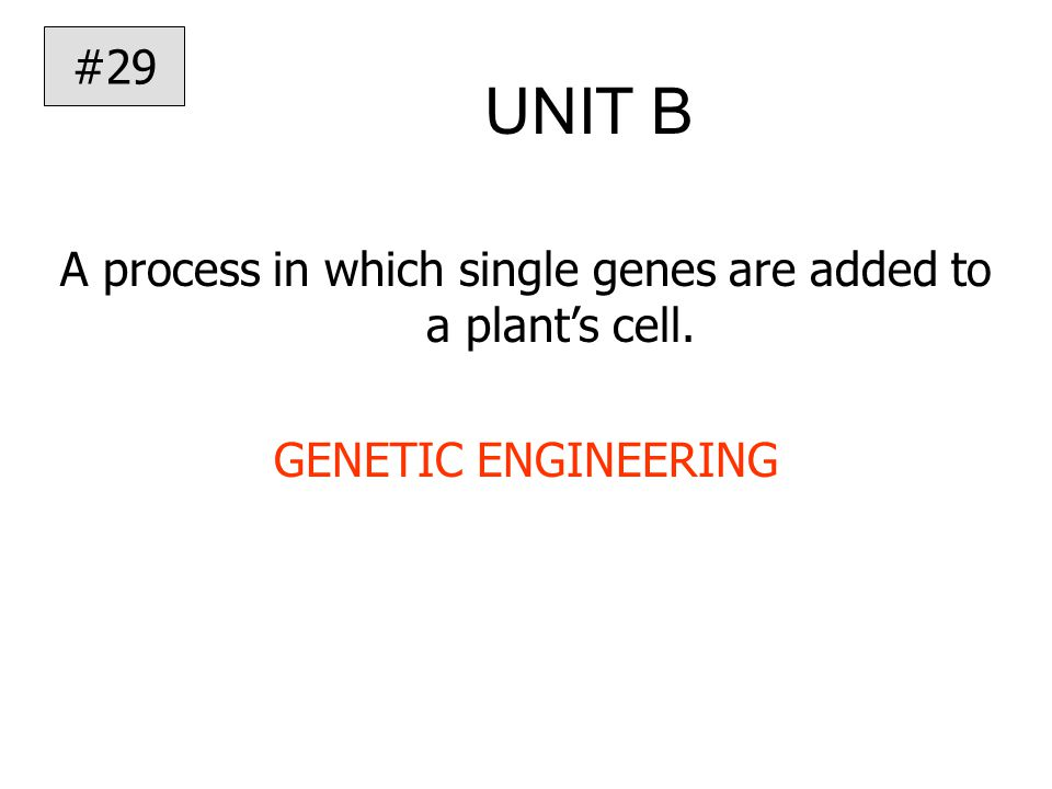 UNIT B A process in which single genes are added to a plant's cell. GENETIC ENGINEERING #29
