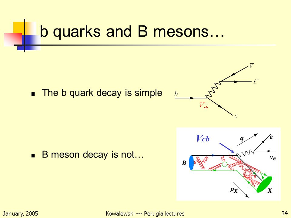 January, 2005 Kowalewski --- Perugia lectures 34 b quarks and B mesons… The b quark decay is simple B meson decay is not… V cb