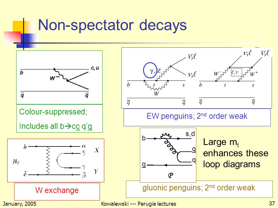 January, 2005 Kowalewski --- Perugia lectures 37 Non-spectator decays Colour-suppressed; Includes all b  cc q'q EW penguins; 2 nd order weak ℓℓ ℓℓ ℓℓ ℓℓ ℓ, ν W exchange gluonic penguins; 2 nd order weak Large m t enhances these loop diagrams b q s,d q q