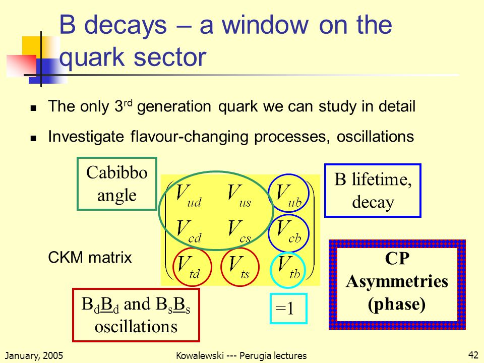 January, 2005 Kowalewski --- Perugia lectures 42 B decays – a window on the quark sector The only 3 rd generation quark we can study in detail Investigate flavour-changing processes, oscillations CKM matrix Cabibbo angle B d B d and B s B s oscillations B lifetime, decay =1 CP Asymmetries (phase)