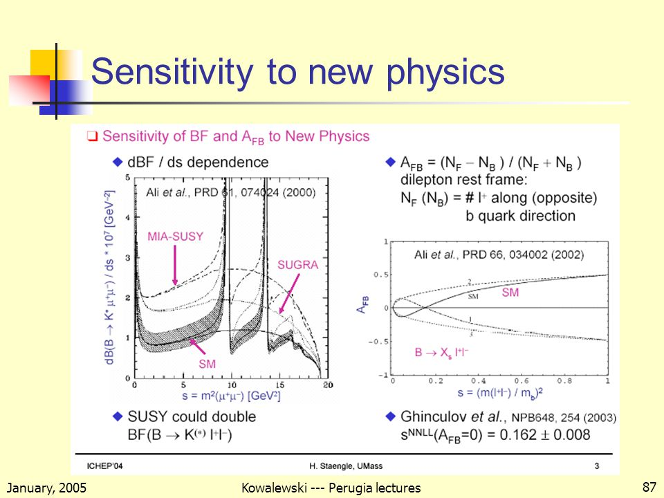 January, 2005 Kowalewski --- Perugia lectures 87 Sensitivity to new physics