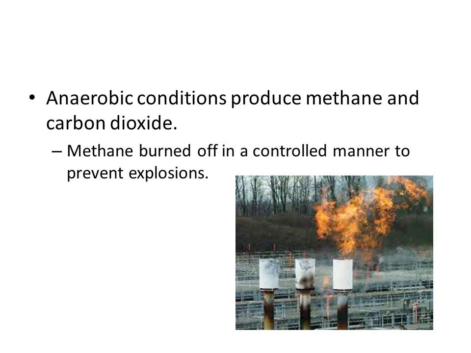 Anaerobic conditions produce methane and carbon dioxide.