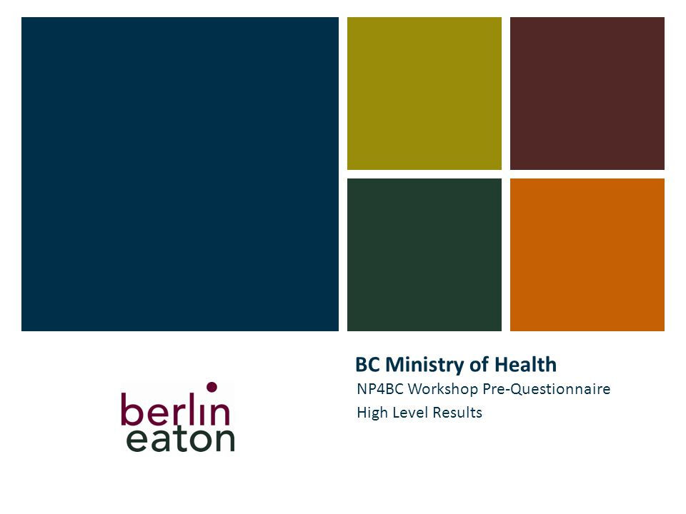 BC Ministry of Health NP4BC Workshop Pre-Questionnaire High Level Results