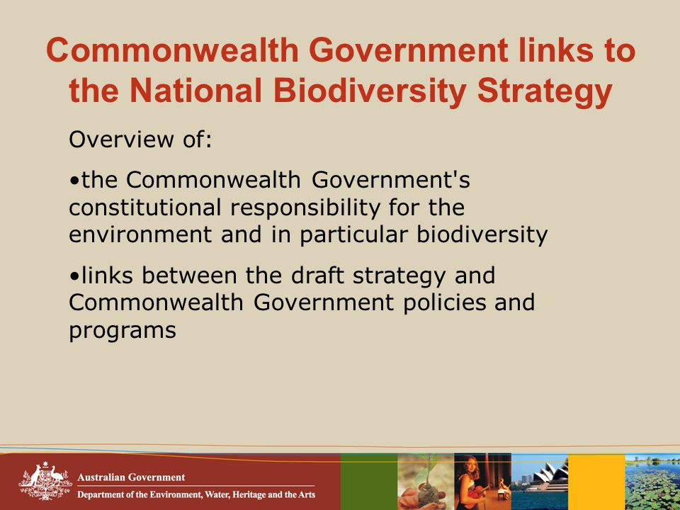 Commonwealth Government links to the National Biodiversity Strategy Overview of: the Commonwealth Government s constitutional responsibility for the environment and in particular biodiversity links between the draft strategy and Commonwealth Government policies and programs