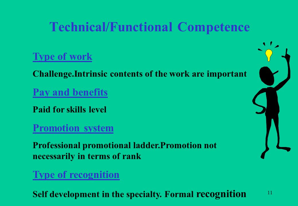 11 Technical/Functional Competence Type of work Challenge.Intrinsic contents of the work are important Pay and benefits Paid for skills level Promotion system Professional promotional ladder.Promotion not necessarily in terms of rank Type of recognition Self development in the specialty.