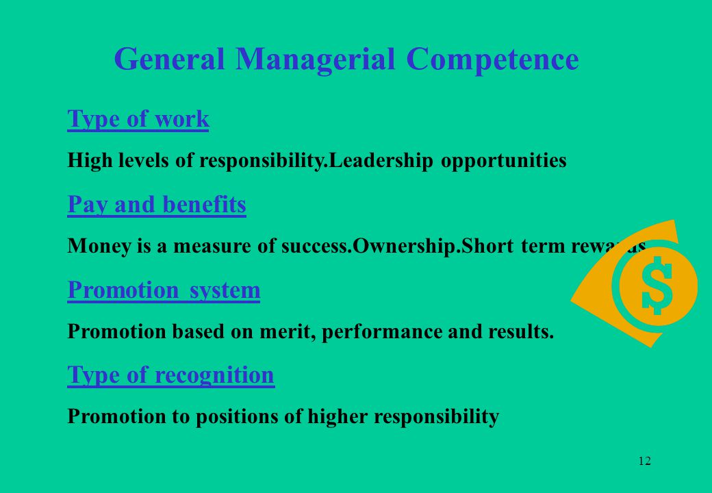 12 General Managerial Competence Type of work High levels of responsibility.Leadership opportunities Pay and benefits Money is a measure of success.Ownership.Short term rewards.