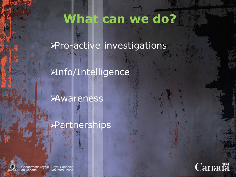 What can we do  Pro-active investigations  Info/Intelligence  Awareness  Partnerships