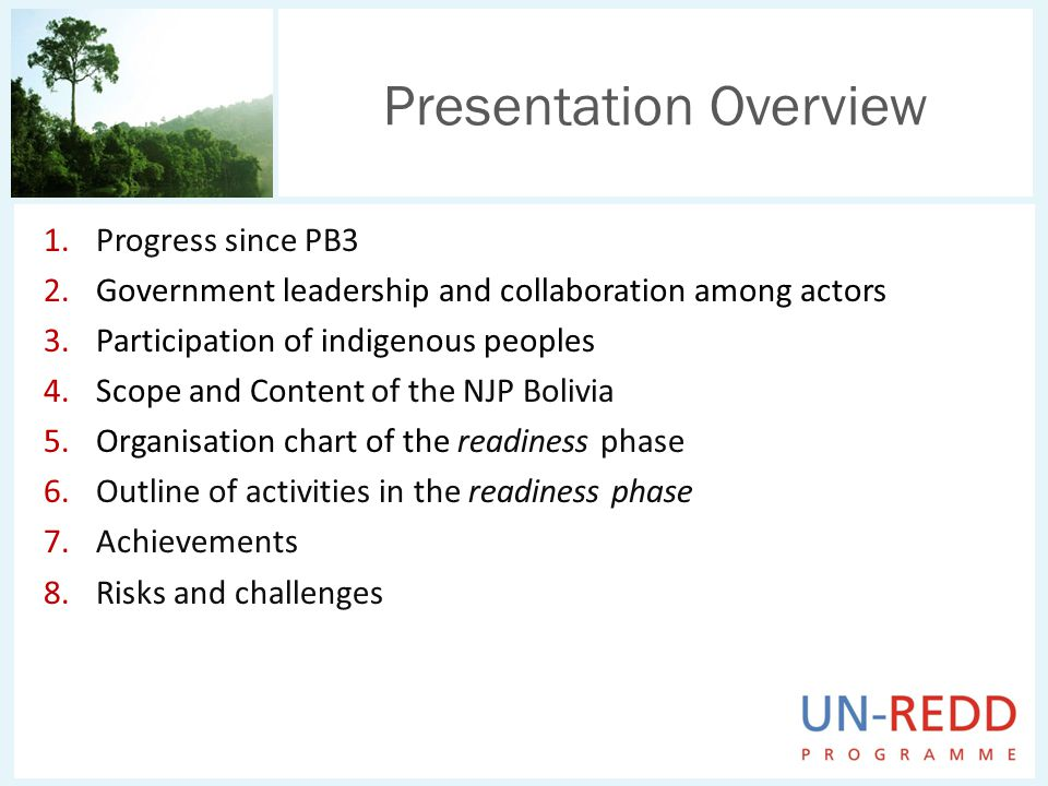 1.Progress since PB3 2.Government leadership and collaboration among actors 3.Participation of indigenous peoples 4.Scope and Content of the NJP Bolivia 5.Organisation chart of the readiness phase 6.Outline of activities in the readiness phase 7.Achievements 8.Risks and challenges Presentation Overview
