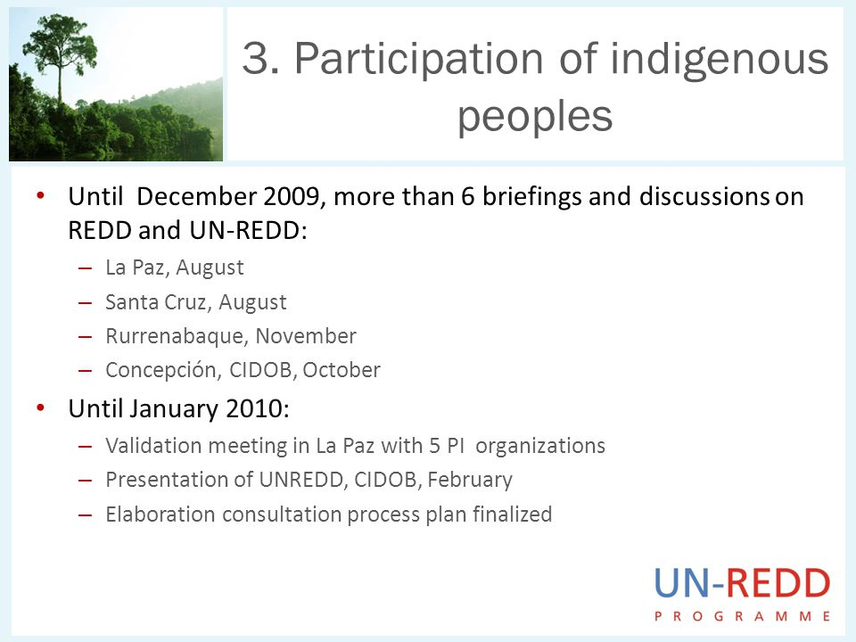 Until December 2009, more than 6 briefings and discussions on REDD and UN-REDD: – La Paz, August – Santa Cruz, August – Rurrenabaque, November – Concepción, CIDOB, October Until January 2010: – Validation meeting in La Paz with 5 PI organizations – Presentation of UNREDD, CIDOB, February – Elaboration consultation process plan finalized 3.
