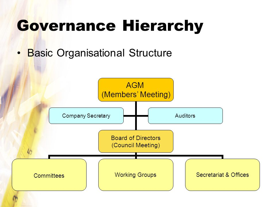 Governance Hierarchy Basic Organisational Structure AGM (Members' Meeting) Board of Directors (Council Meeting) CommitteesWorking Groups Secretariat & Offices Company Secretary Auditors