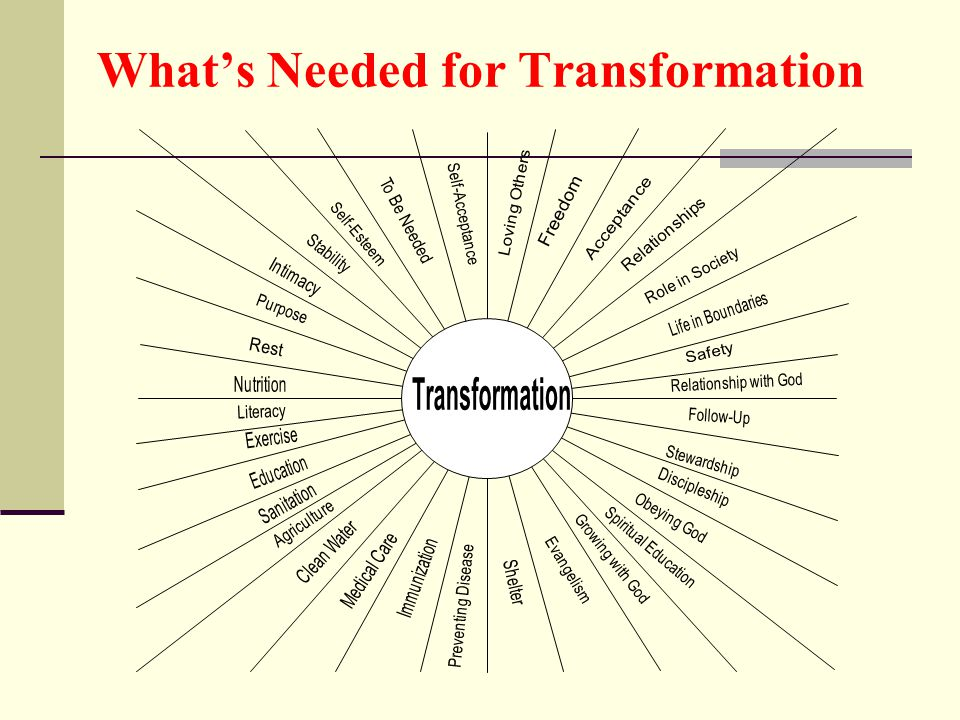 What's Needed for Transformation
