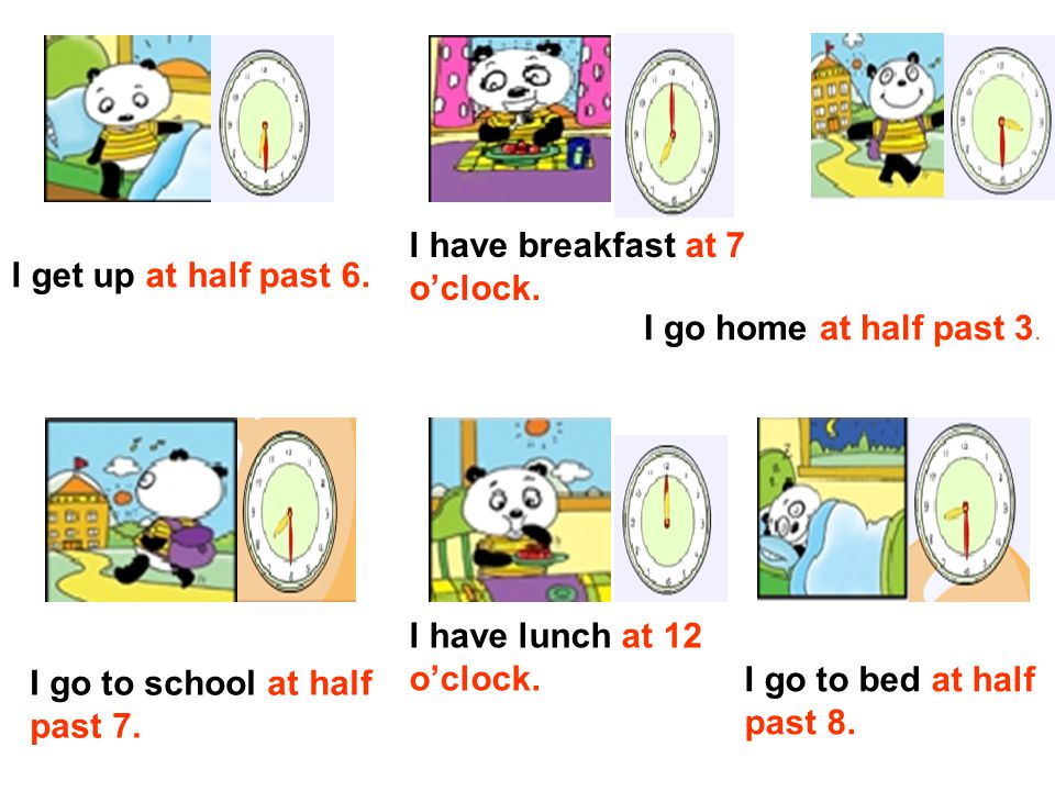 get up go to bed go home have breakfast have lunch go to school