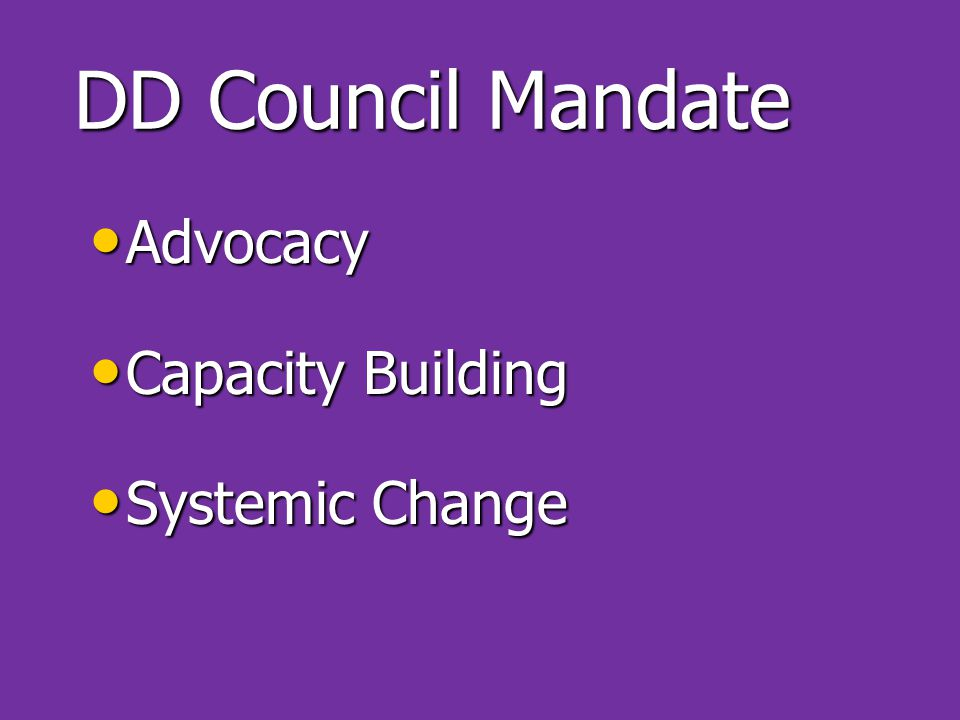 DD Council Mandate Advocacy Advocacy Capacity Building Capacity Building Systemic Change Systemic Change