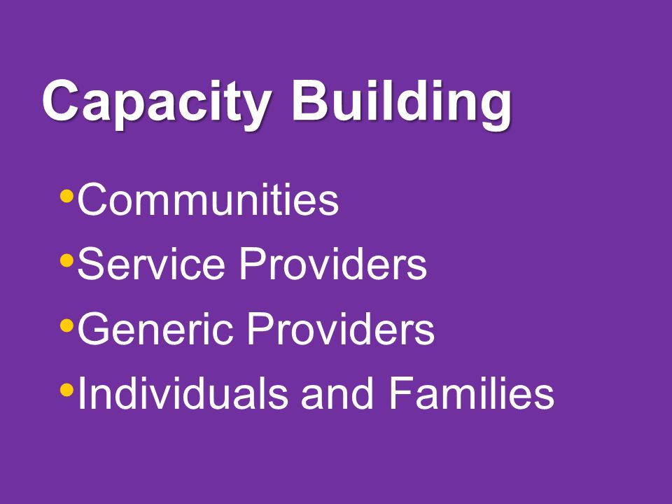 Capacity Building Communities Service Providers Generic Providers Individuals and Families