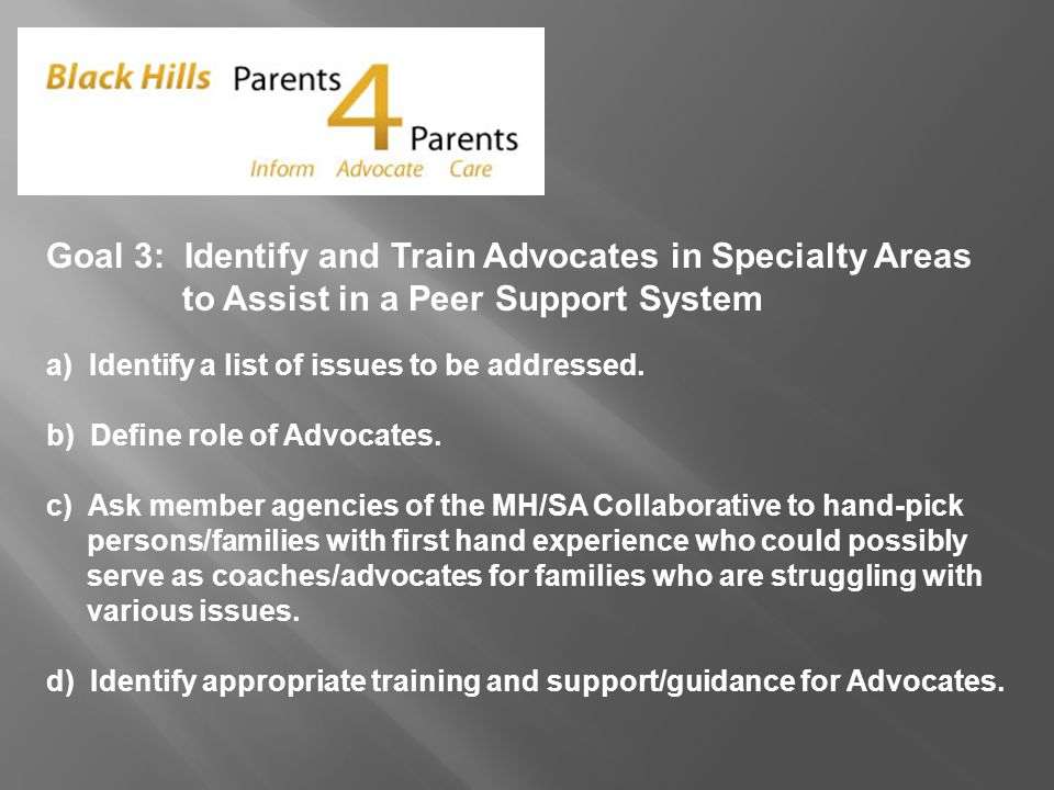 Goal 3: Identify and Train Advocates in Specialty Areas to Assist in a Peer Support System a) Identify a list of issues to be addressed.