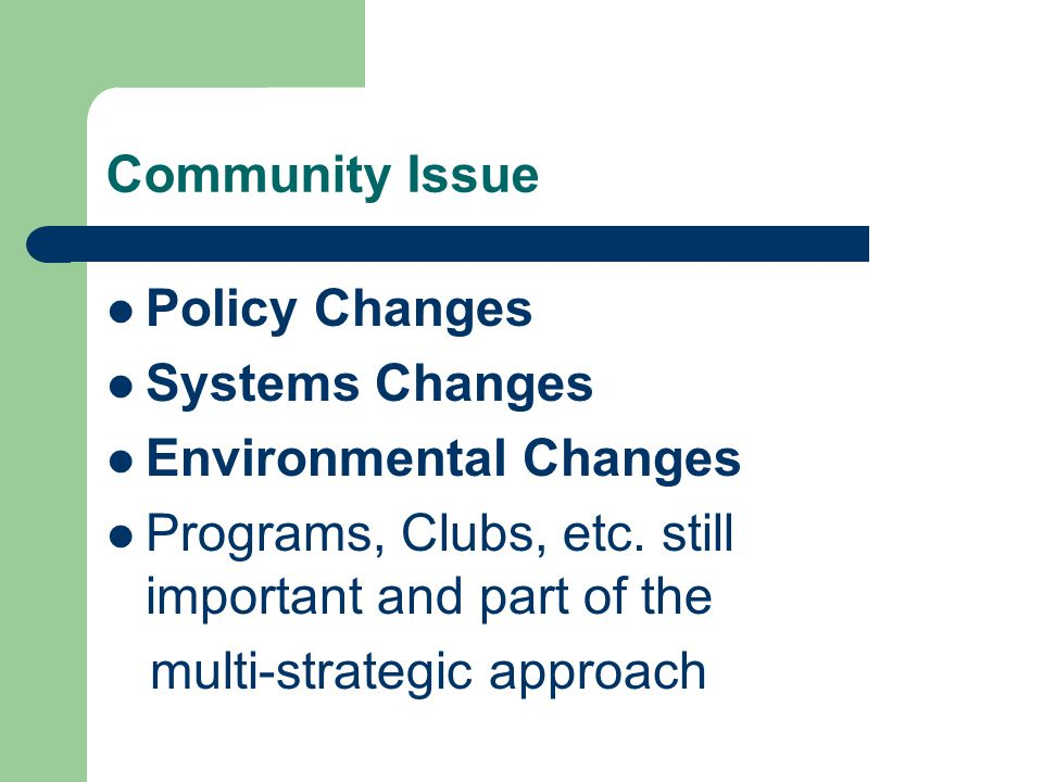 Community Issue Policy Changes Systems Changes Environmental Changes Programs, Clubs, etc.