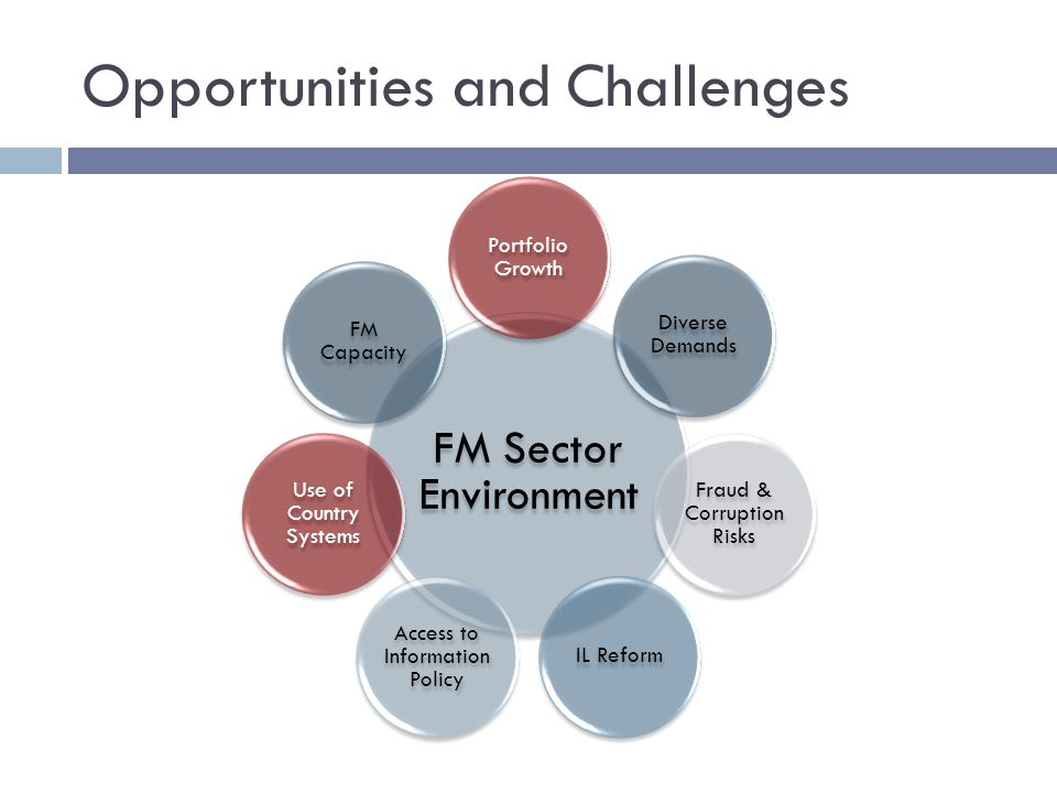 Opportunities and Challenges FM Sector Environment Portfolio Growth Diverse Demands Fraud & Corruption Risks IL Reform Access to Information Policy Use of Country Systems FM Capacity