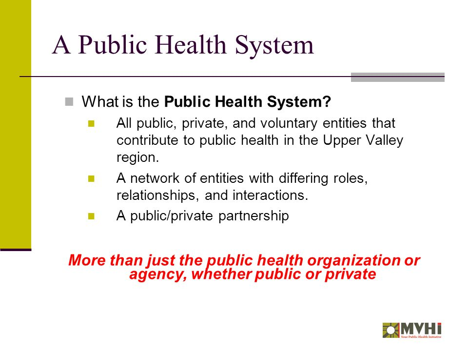 A Public Health System What is the Public Health System.