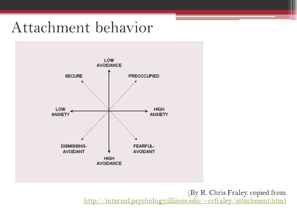 Attachment behavior (By R. Chris Fraley.