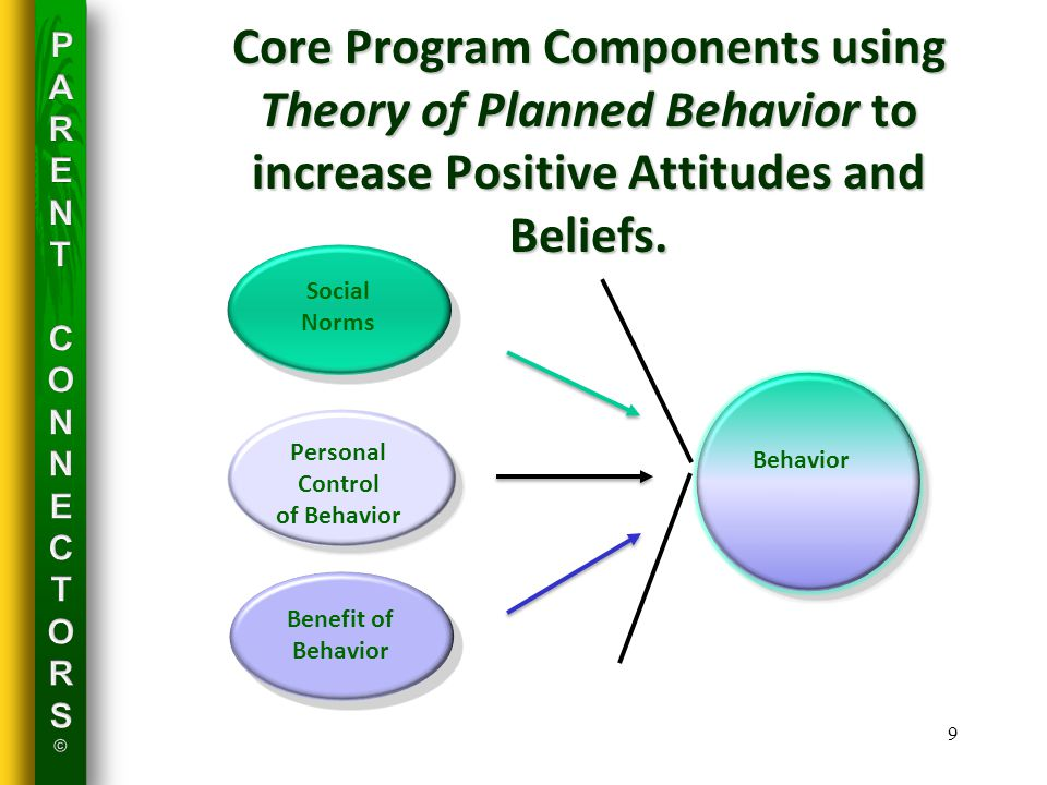 Core Program Components using Theory of Planned Behavior to increase Positive Attitudes and Beliefs.