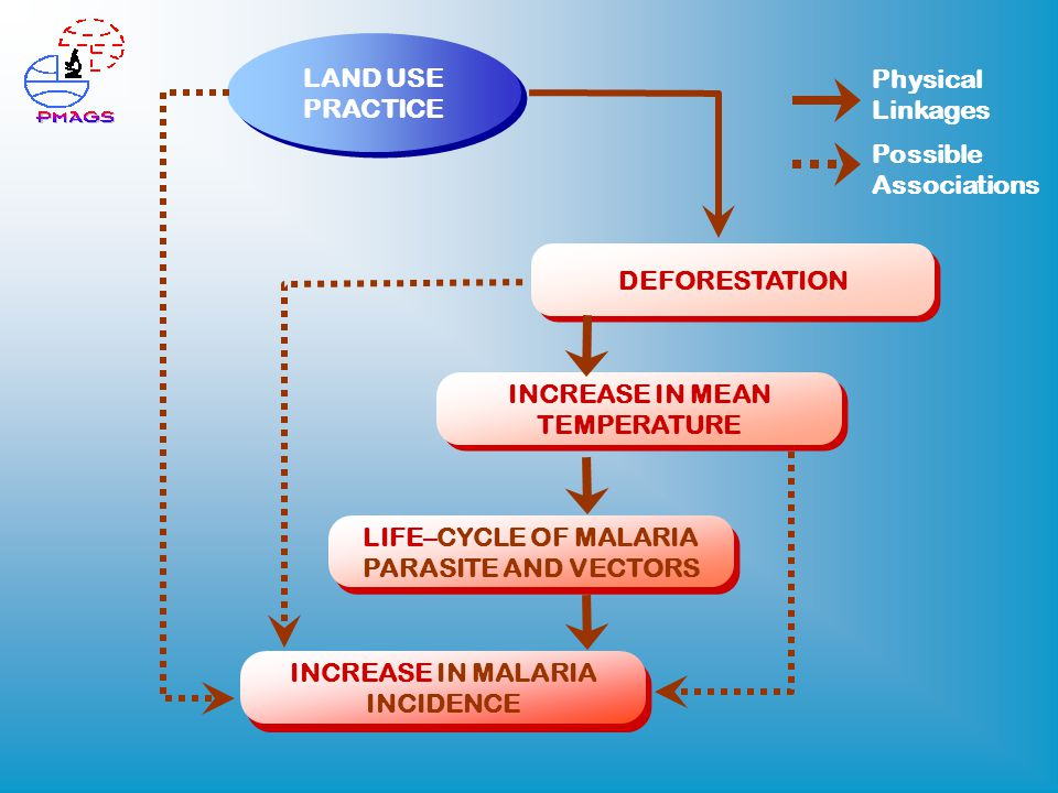 LIFE–CYCLE OF MALARIA PARASITE AND VECTORS LAND USE PRACTICE DEFORESTATION INCREASE IN MALARIA INCIDENCE INCREASE IN MEAN TEMPERATURE Physical Linkages Possible Associations