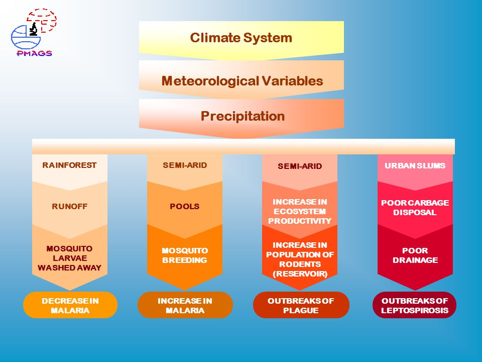 Climate System Meteorological Variables Precipitation DECREASE IN MALARIA INCREASE IN MALARIA OUTBREAKS OF PLAGUE OUTBREAKS OF LEPTOSPIROSIS MOSQUITO LARVAE WASHED AWAY MOSQUITO BREEDING INCREASE IN POPULATION OF RODENTS (RESERVOIR) POOR DRAINAGE RUNOFF RAINFOREST POOLS SEMI-ARID INCREASE IN ECOSYSTEM PRODUCTIVITY SEMI-ARID POOR CARBAGE DISPOSAL URBAN SLUMS