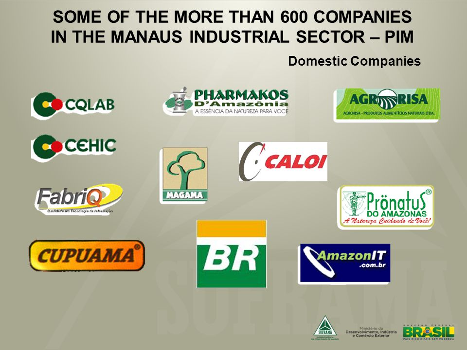SOME OF THE MORE THAN 600 COMPANIES IN THE MANAUS INDUSTRIAL SECTOR – PIM Domestic Companies