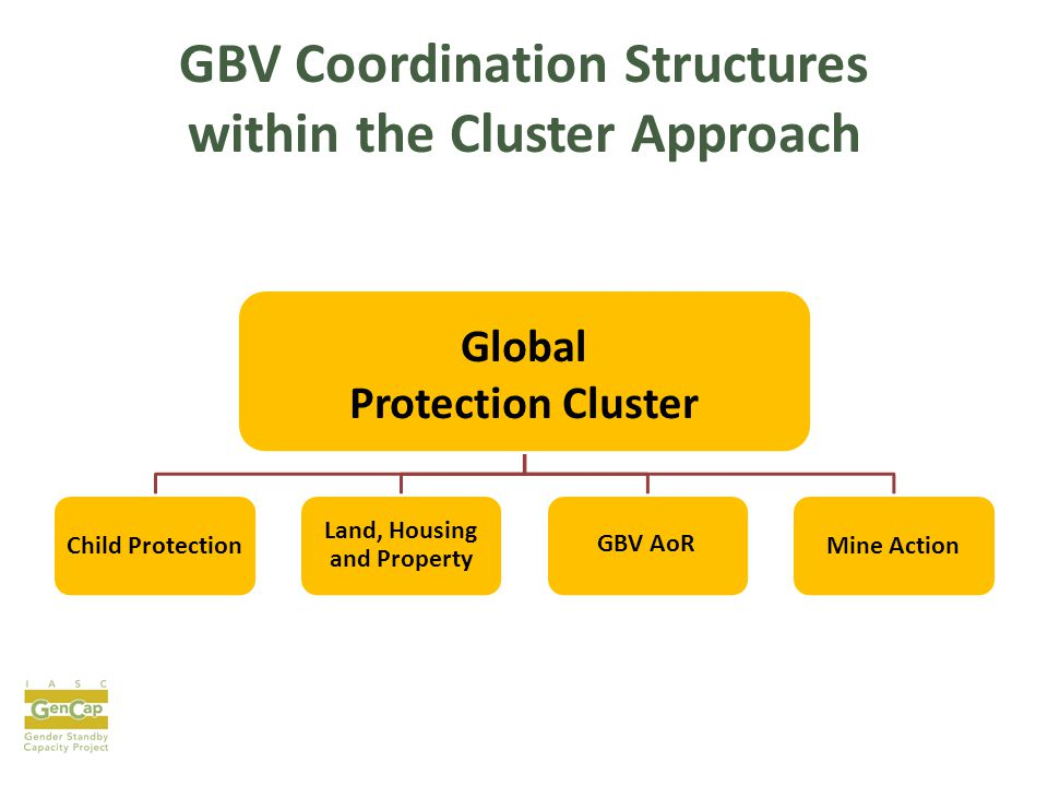 GBV Coordination Structures within the Cluster Approach Global Protection Cluster Child Protection Land, Housing and Property GBV AoR Mine Action